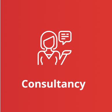 consultancy-02